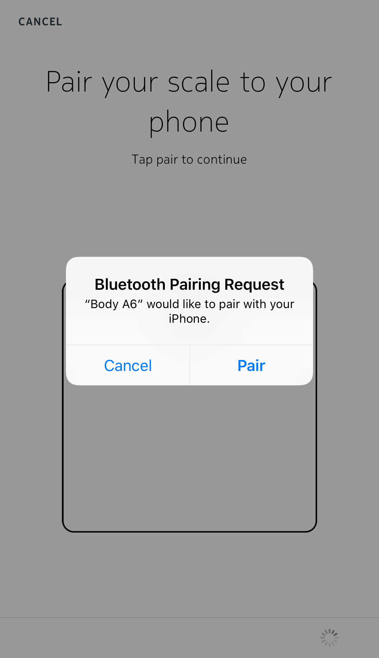 pairing-request-body-ios.png